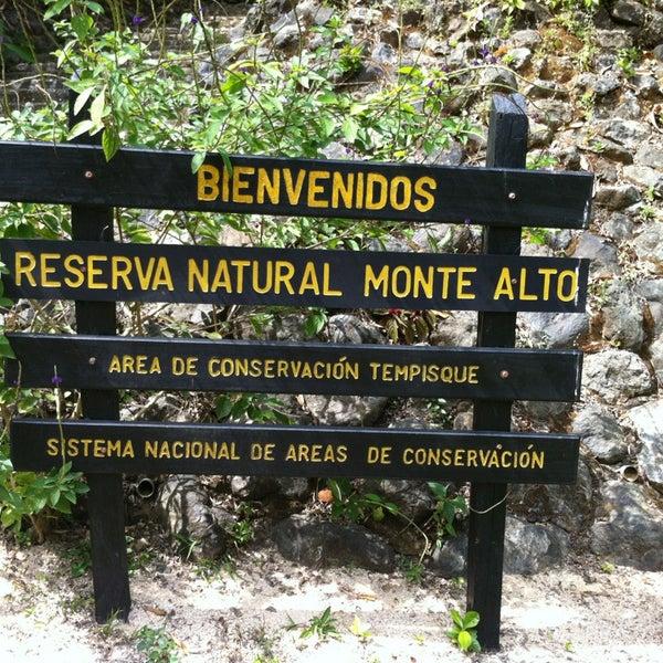 Reserva Monte Alto